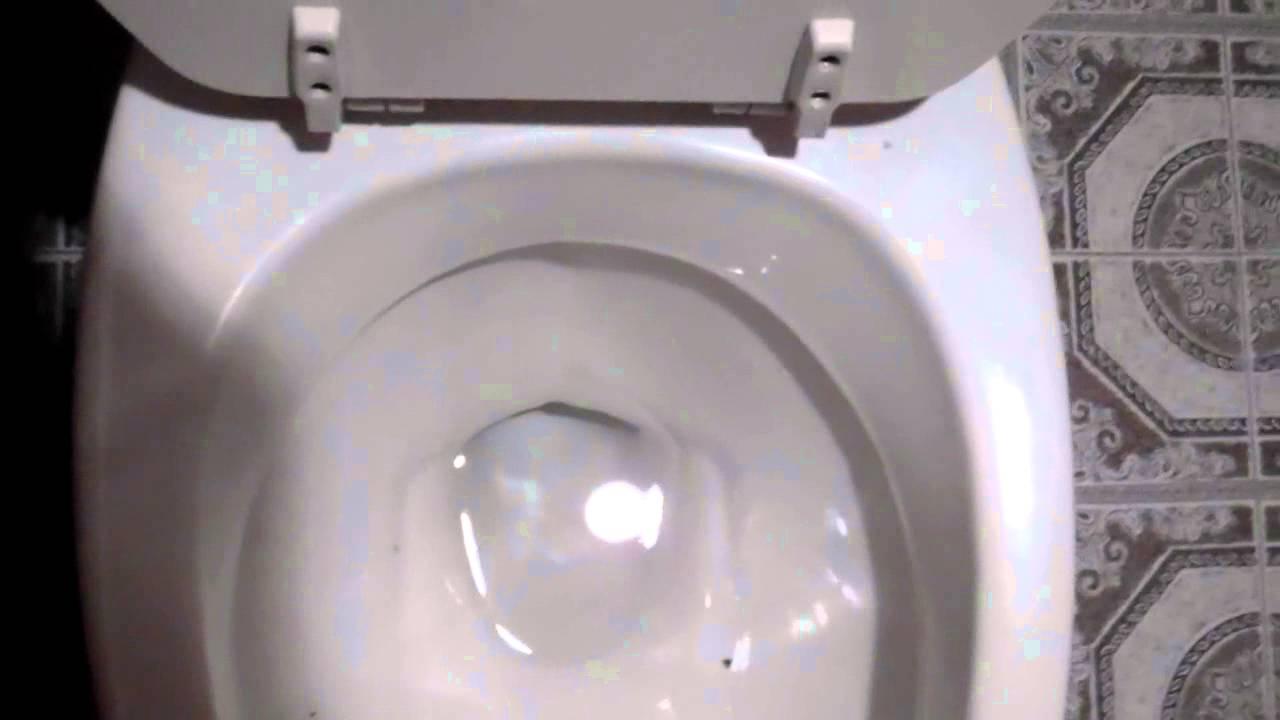 3786 1986 Eljer Gustavsberg Toilet Youtube