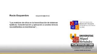 Doctorado IBMC - Las Matrices de Sílice en la Inmovilización de Sistemas Lipídicos