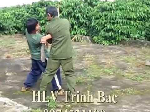 vo thuat vietnam 2