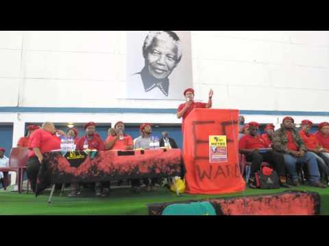Julius Malema van  EFF hou vergadering by Mew Way Saal Khayalitsha Video Peter Abrahams Die Son  11