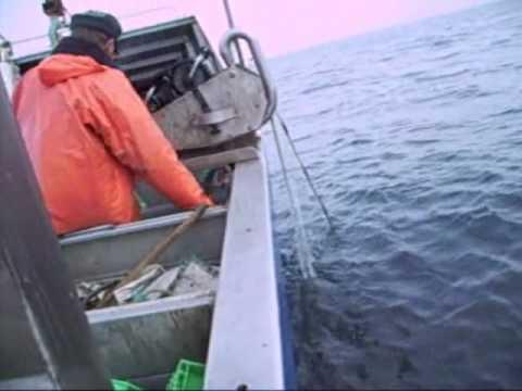 Regler for fiskeri med garn