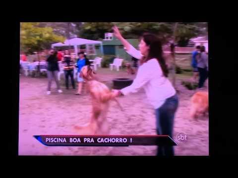 PARK CLUBE DO TOTÓ REPORTAGEM SBT 2014 08 09 20 15 05