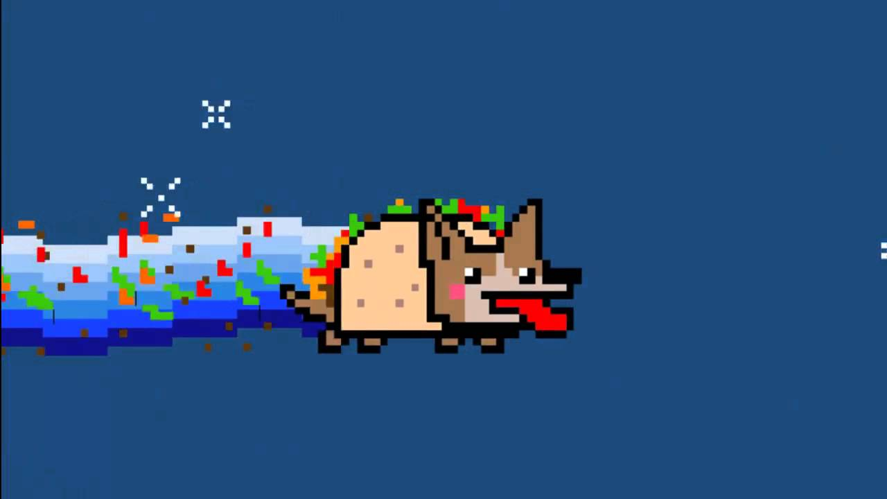 NON-STOP FIESTA DOG (NYAN CAT PARODY) - YouTube Nyan Dog