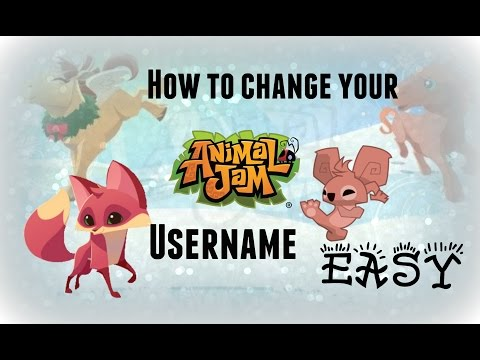 How To Change Your Animal Jam Username 2016 *EASY*