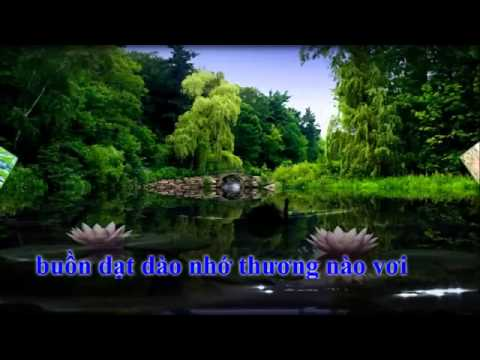 Karaoke Vọng Kim Lang