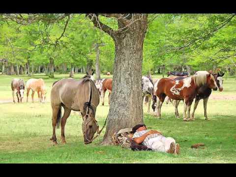 Gauchos Argentinos (Tradiciones)
