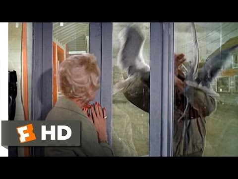 The Birds (8/11) Movie CLIP - Trapped in a Phone Booth (1963) HD