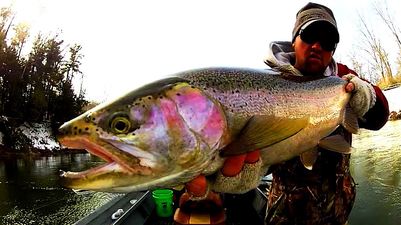 Steelhead fishing michigan youtube for Michigan steelhead fishing