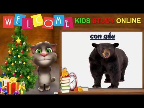 Hoạt hình mèo Tom dạy Bé tập nói Con Gấu rất vui nhộn và hữu ích