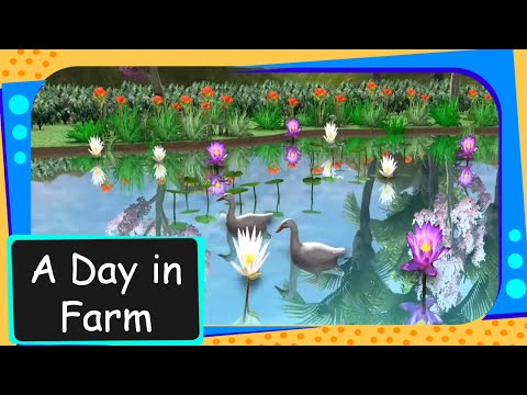 Science - Domestic Animals - A day in the farm