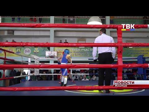 Два первых, 11 призовых мест и один специальный приз выиграли боксеры Искитима на областном турнире в честь А.Винникова
