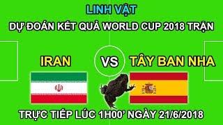 Linh Vật world Cup Dự Đoán trận IRAN vs TÂY BAN NHA   Trực tiếp lúc 1h00 21/6 trên VTV3