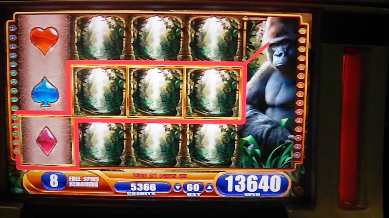 Queen of the Wild II Slot Machine - Play Online for Free