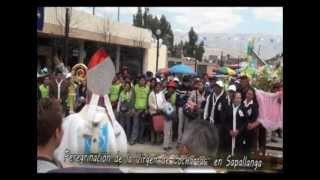 Virgen De Cocharcas Sapallanga (Huancayo Pone)