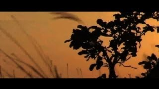 New Indian Hindi Music 2013 Best Top Hits Hd Playlist