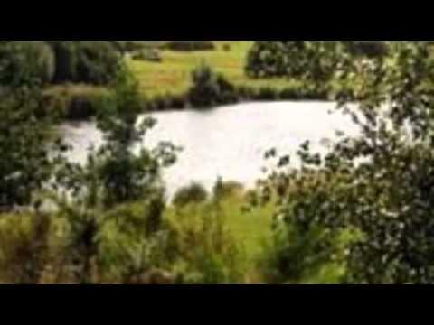 Haigh Hall Country Park Penwortham Lancashire