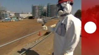 Fukushima Cäsium-Level Faktor 90