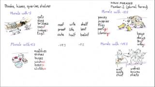 Noun Phrases, Plural endings video lesson