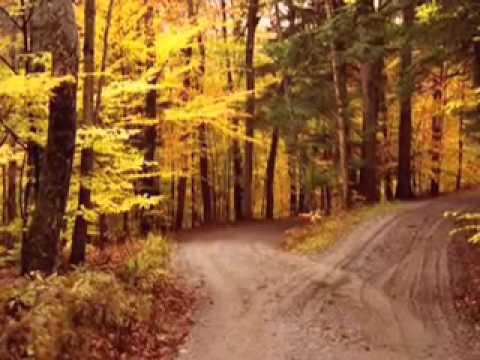 Road Not Taken by Robert Frost