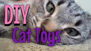 Jednostavno i lako sami napravite igračku za svoju mačku