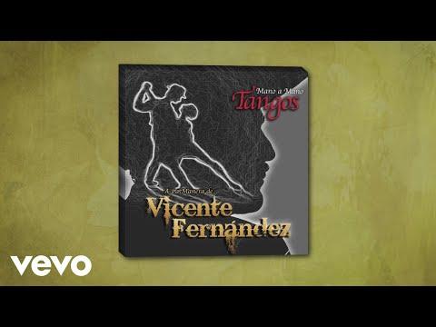 Vicente Fernández - El Día Que Me Quieras (Cover Audio)