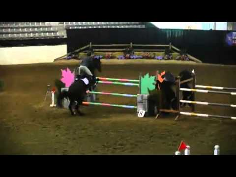 Video of PM JAGUAR ridden by ALEXANDRA OZYMY from ShowNet!