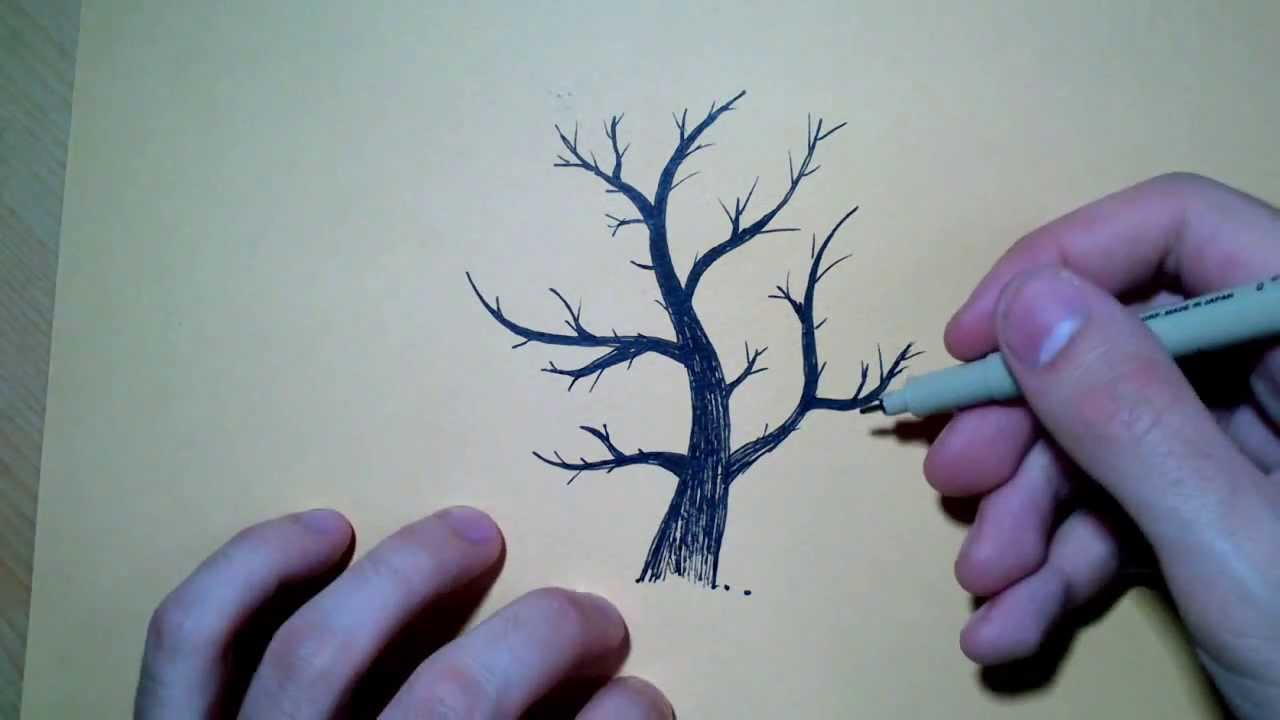 Dessiner la base d 39 un arbre technique youtube - Dessin arbre sans feuille ...