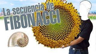 La secuencia de Fibonacci