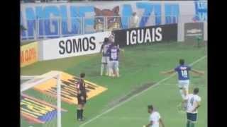 Ricardo Goulart, Henrique e Fred foram o conjunto dos três goleadores do Campeonato Brasileiro, porém em momento bem diferentes na carreira. Acompanhe:
