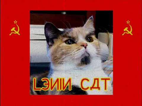 Gatos que se parecen a Lenin y Stalin Hqdefault