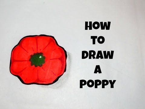 How To Draw A Simple Poppy Youtube