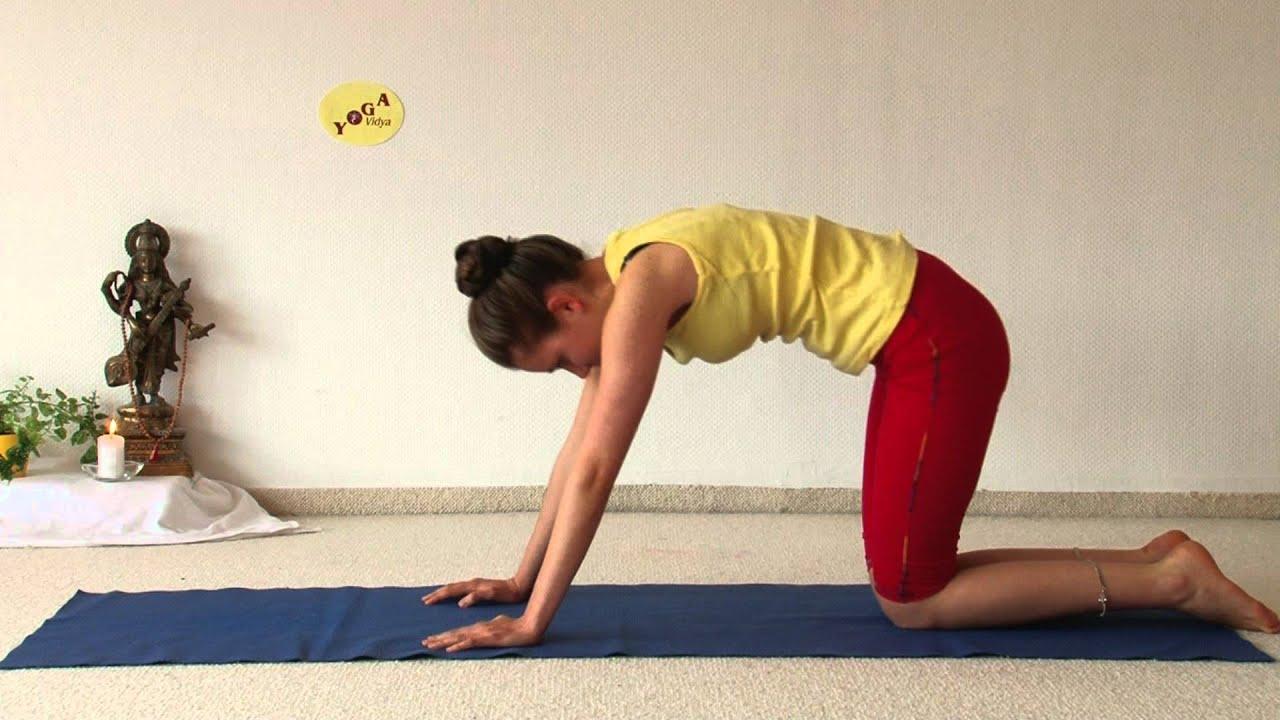 royal cobra advanced yoga asana bhujangasana youtube