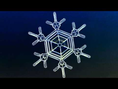 See a snowflake grow before your very eyes