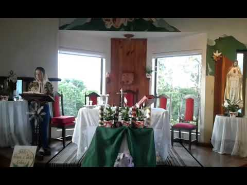 Santa Missa | 08.12.2020 | Terça-feira | Padre José Sometti | ANSPAZ