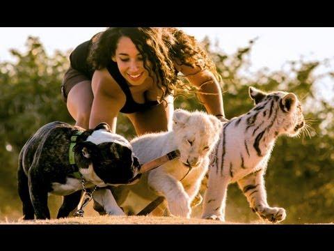 Piękna dziewczyna i dzikie zwierzęta