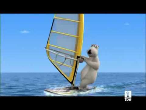 Medveď Bernard - Windsurfing