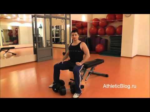 Жим гантелей лежа. Техника выполнения упражнения. Обучающее видео.