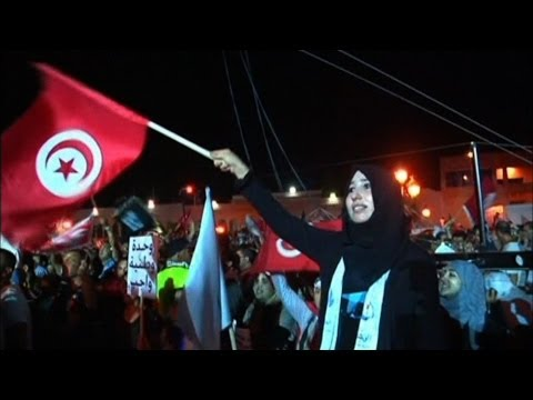 Understanding Arab Spring struggles and success