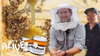 Brad Makes Honey   It's Alive   Bon Appétit