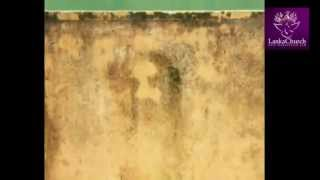 The Astonishing Miracle Kandana Srilanka