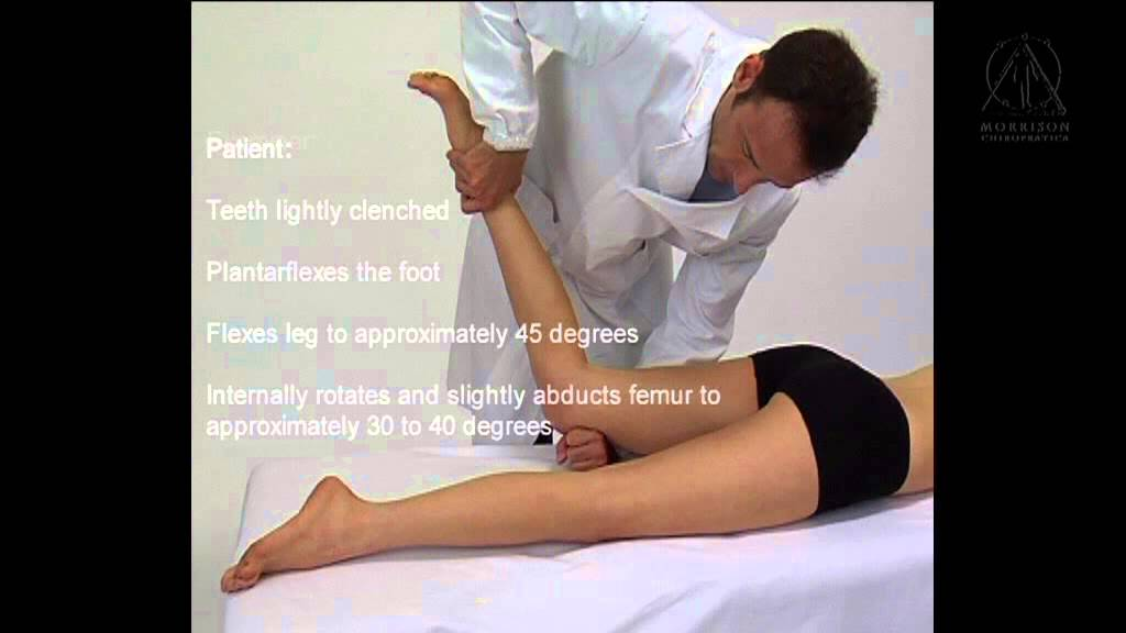 kinesiology and muscle testing The kinesiology network wwwkinesiologynet wwwkinesiologynet - kinesiology network kinesiology network, the web site for manual muscle testing, kinesiologic medicine, applied kinesiology and energy (specialized) kinesiology.