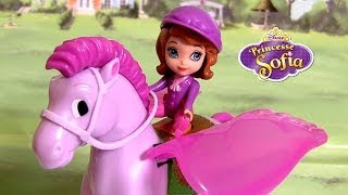 Sofia The First And Minimus Her Flying Horse Pegasus From