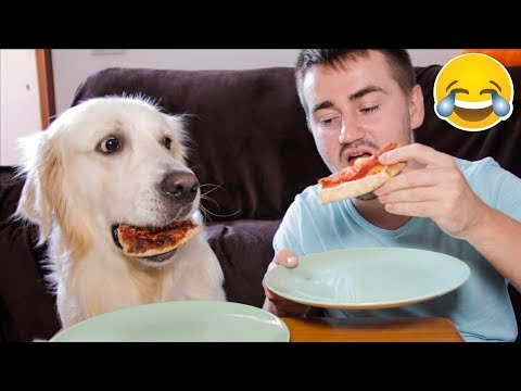 Super Funny Pizza Eating with My Cute Dog Bailey [Try Not To Smile]