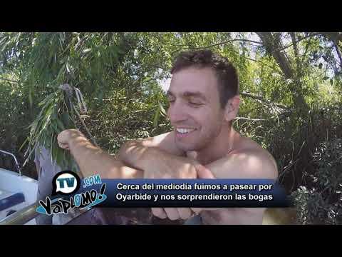VA PLOMO TV PROGRAMA 17