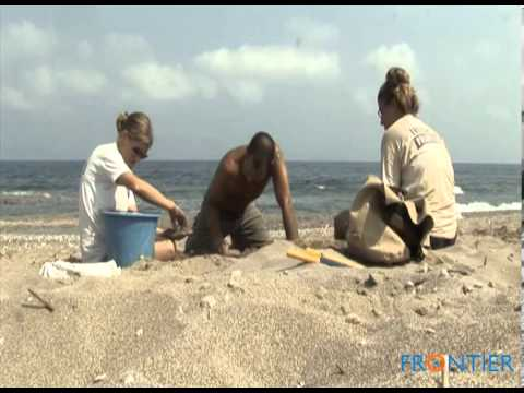 Greece Turtle Conservation Project