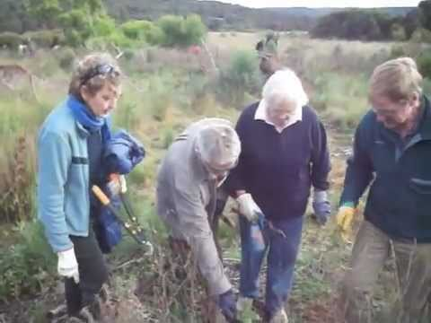 Otway Community Conservation Network Introduction