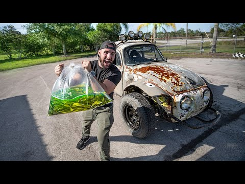 """Transporting SHINERS In """"NEW"""" Off-Road Baja BUGG!! (Hilarious)"""