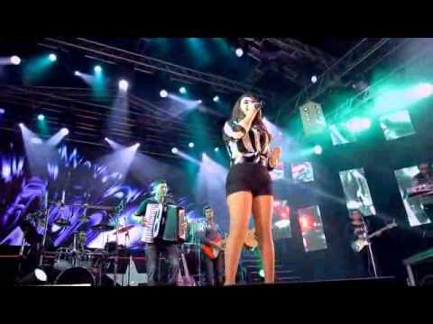 DVD GATINHA MANHOSA 13 ANOS