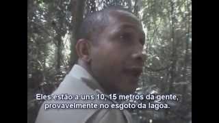 Flagrante De Caçadores No Parque Estadual Do Rio Doce
