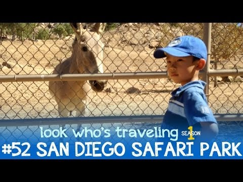 San Diego Safari Park Behind The Scenes Tour